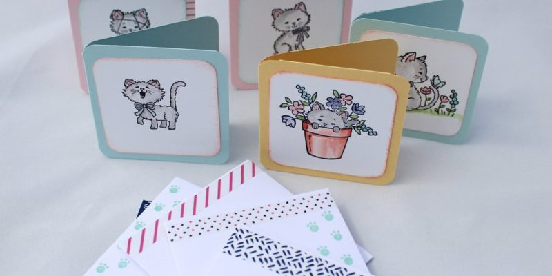 Photo des cartes chatons fripons