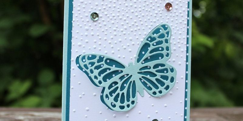 Photo de la carte papillon bleu sous la neige