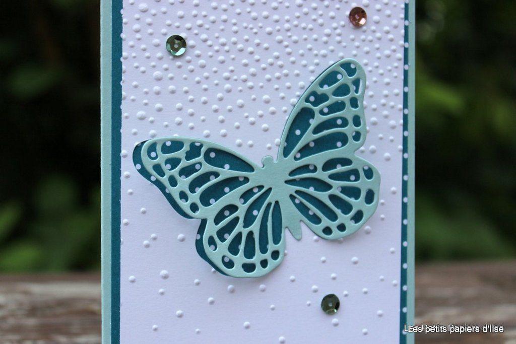 Détail de la carte papillon bleu sous la neige