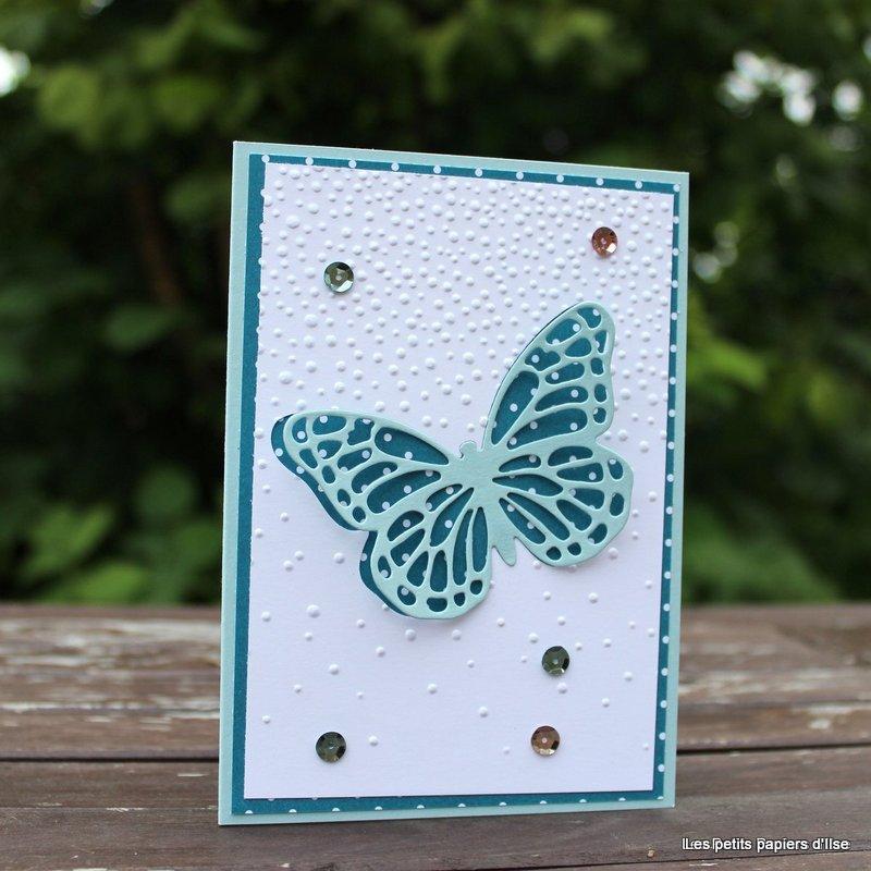 Photo de la carte papillon bleu sous la neige