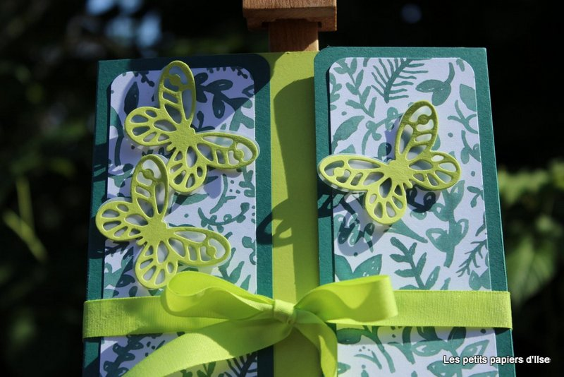 Photo du bloc-notes papillons audacieux