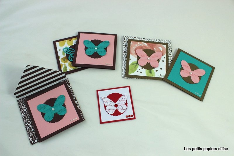 Photo de la variation sur le thème des papillons