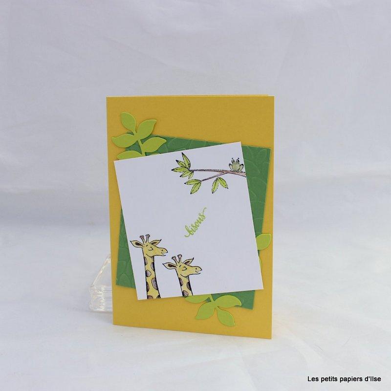 Photo de la carte duo d'animaux pour un p'tit loup