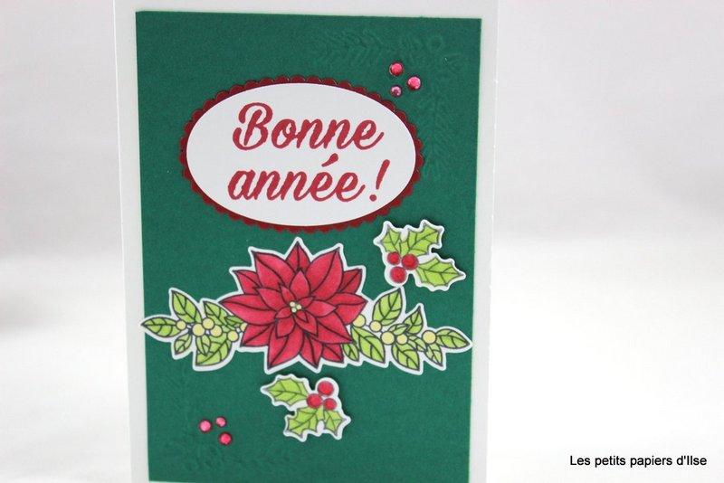 Photo de la carte fleur de noël et houx