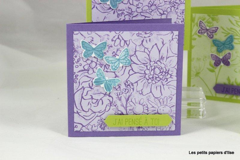 Photo des cartes à bonheurs papillons