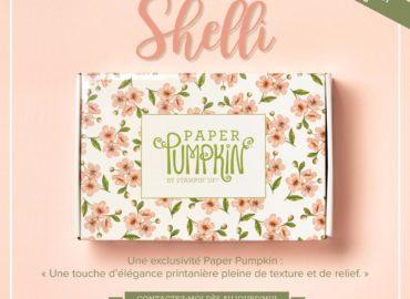 Image du kit Paper Pumpkin