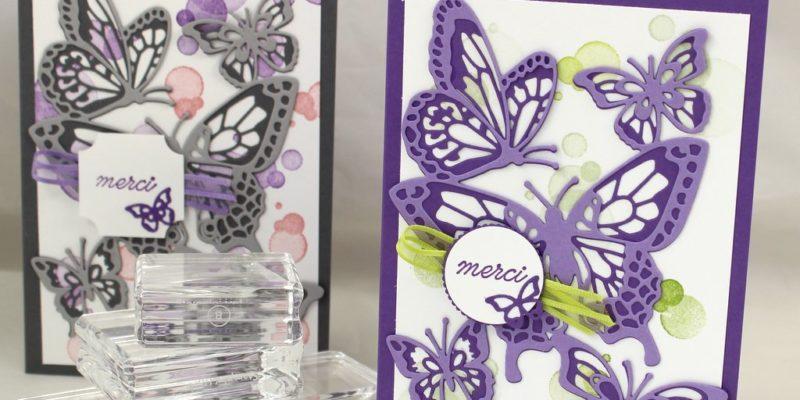 Photo de la carte abondance de papillons