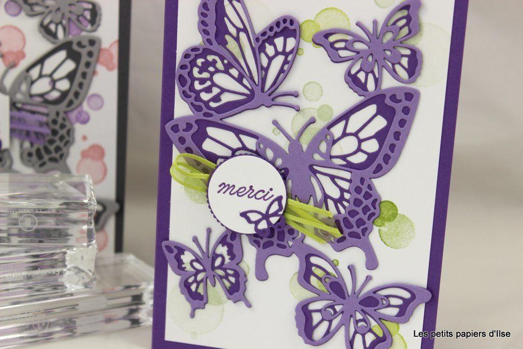 Détail de la carte abondance de papillons