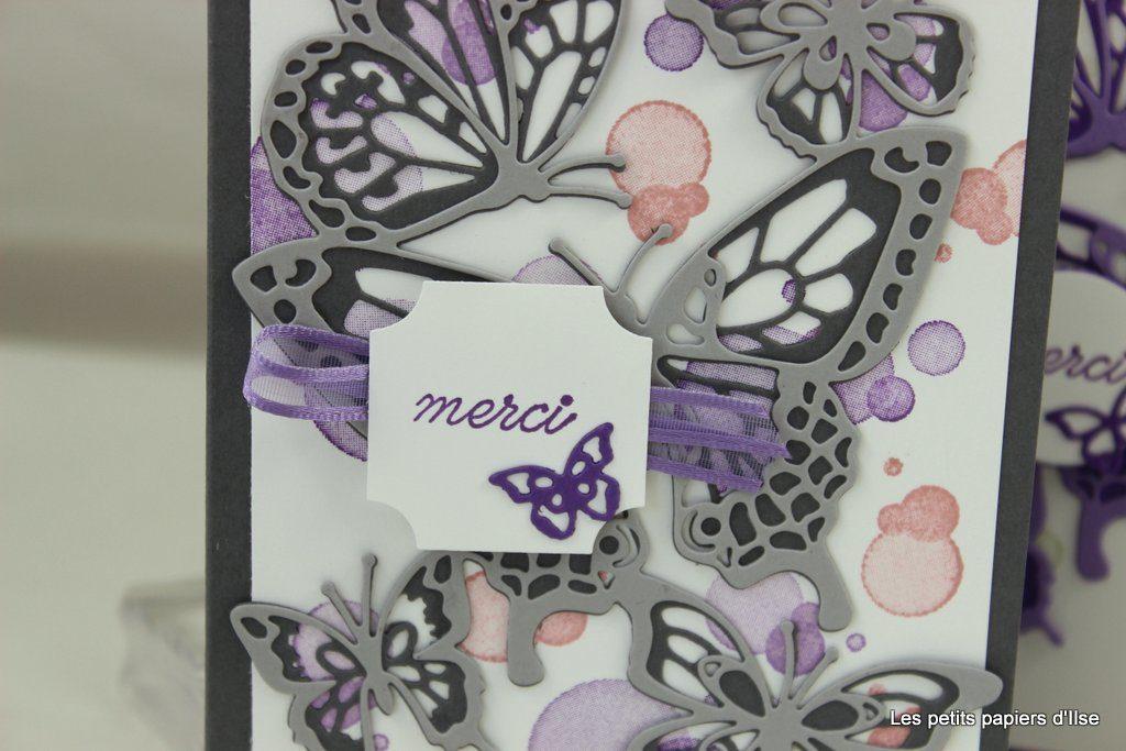Détail de la carte abondance de papillons en gris