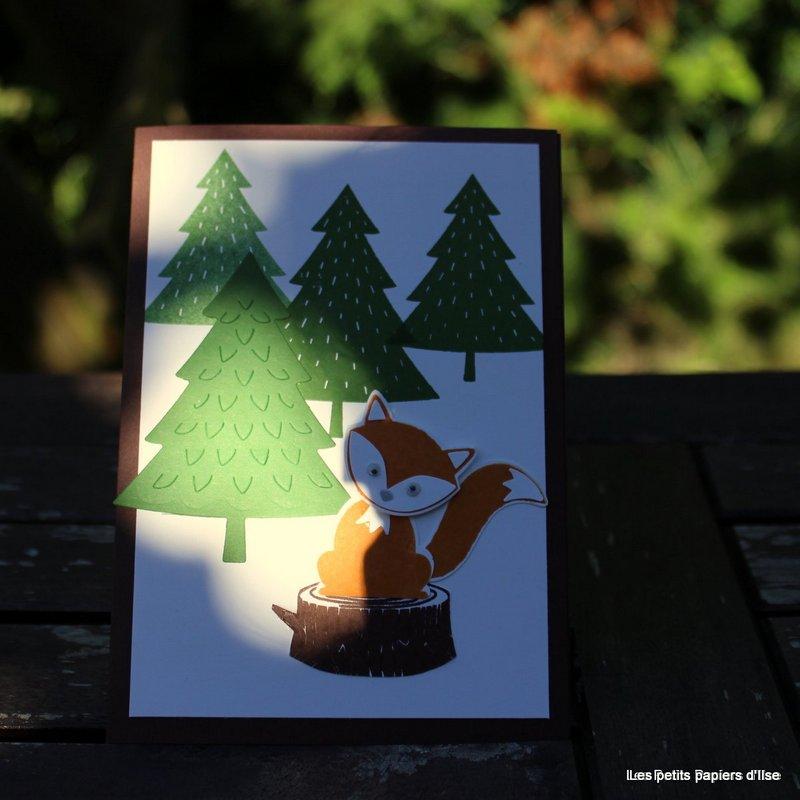 Photo de la carte renard et forêt