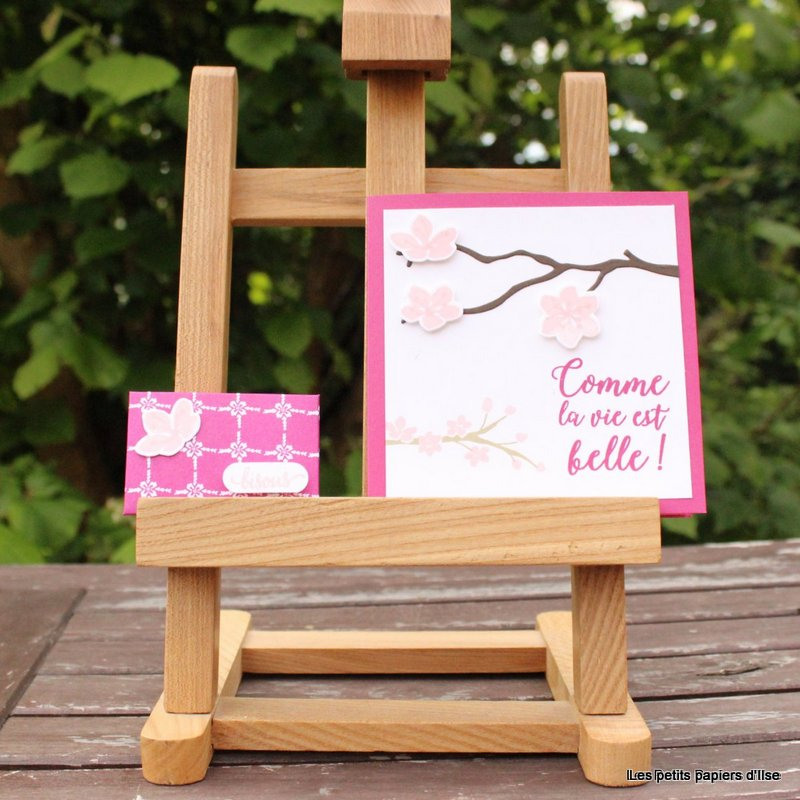 Photo du kit cadeau catalogue fleuri