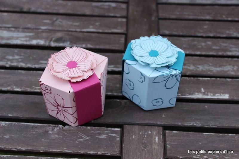 Détail des boites hexagonales