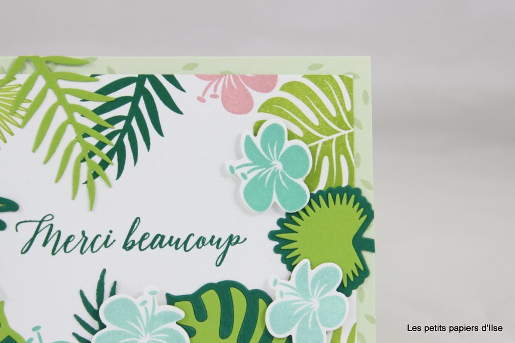 Détail de la carte merci tropical