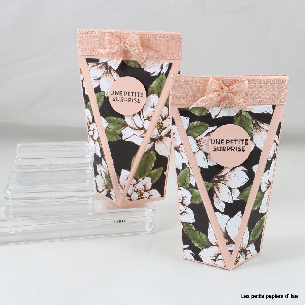 Photo de la boite à pince aux magnolias