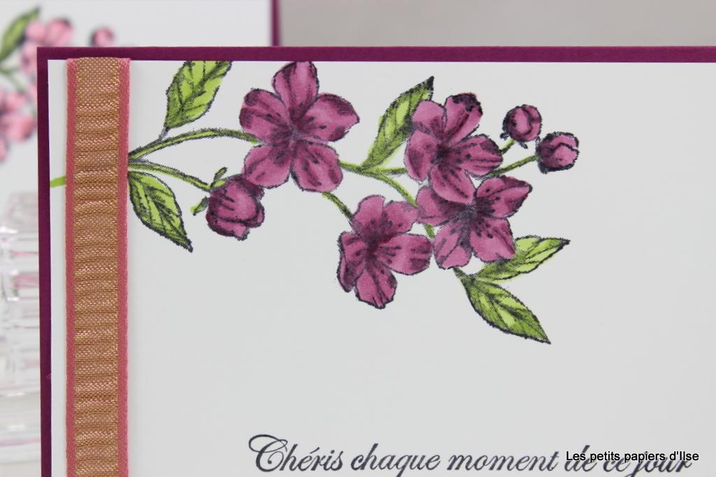 Détail de ma carte SUCT62 les fleurs