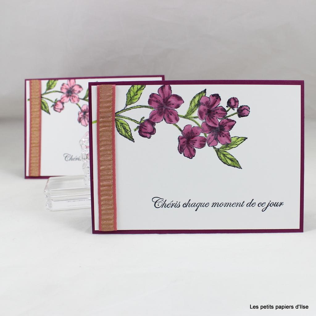 Photo de ma carte SUCT62 les fleurs