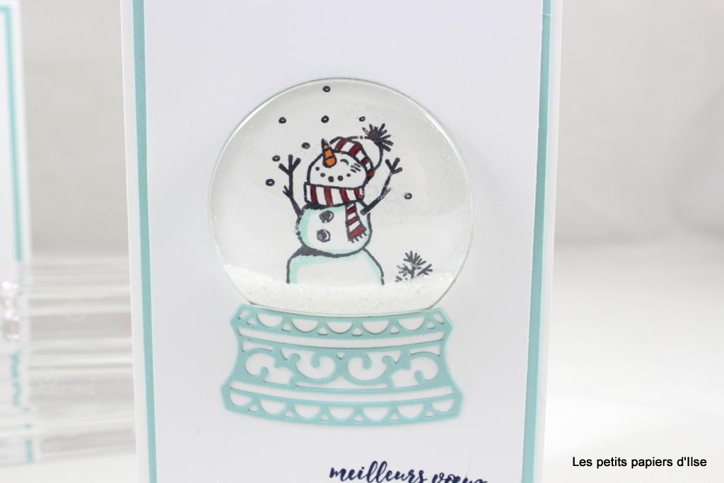 Détail de la carte boule à neige
