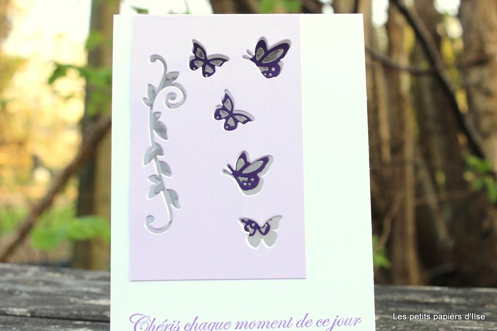Détail de la carte aux papillons découpés