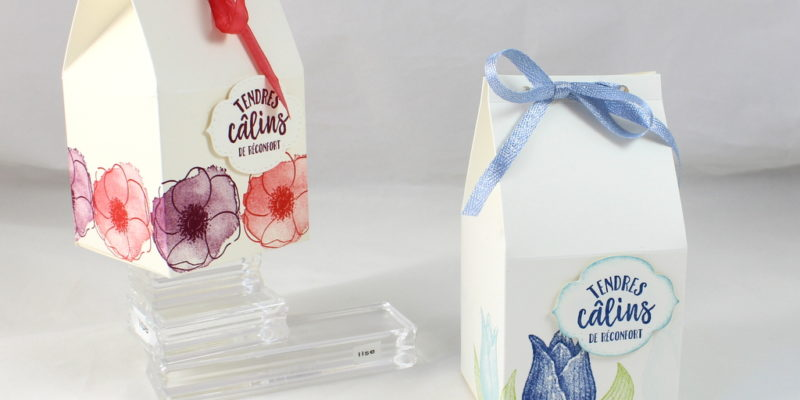 Photo de la boite carton de lait grand format