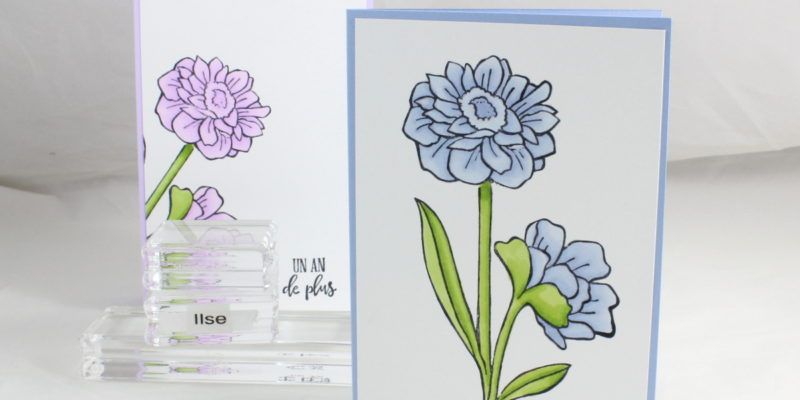 Photo de la carte florale avec mise en couleurs