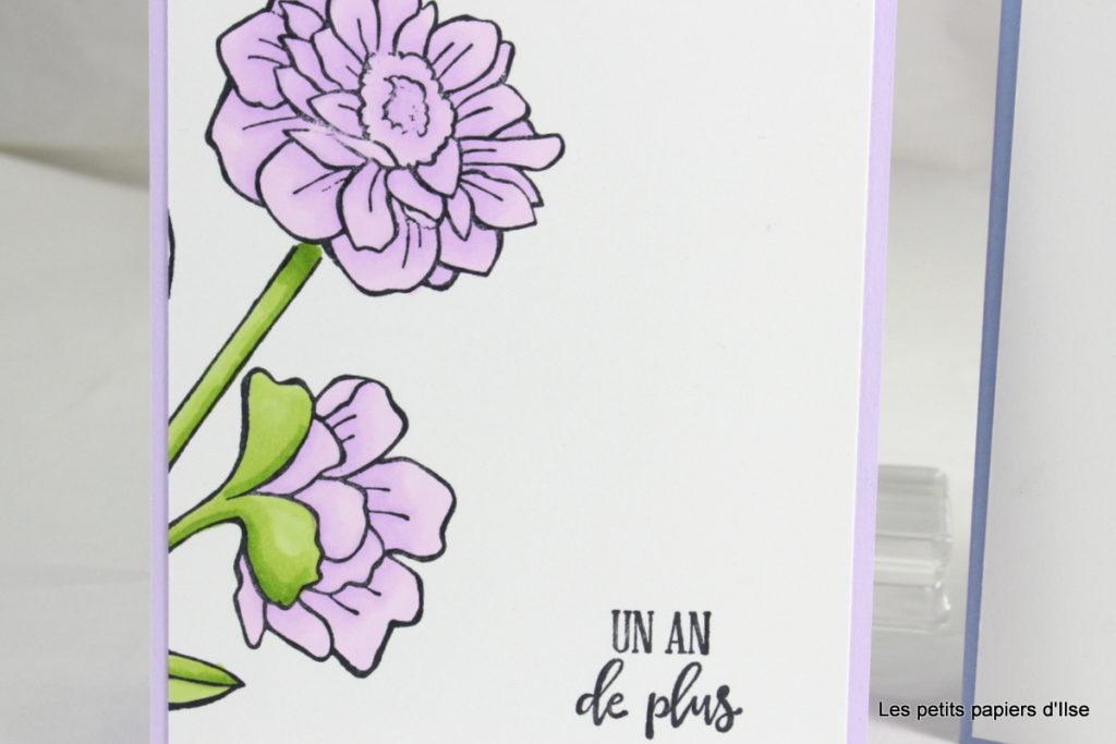 Détail de la carte florale avec mise en couleurs