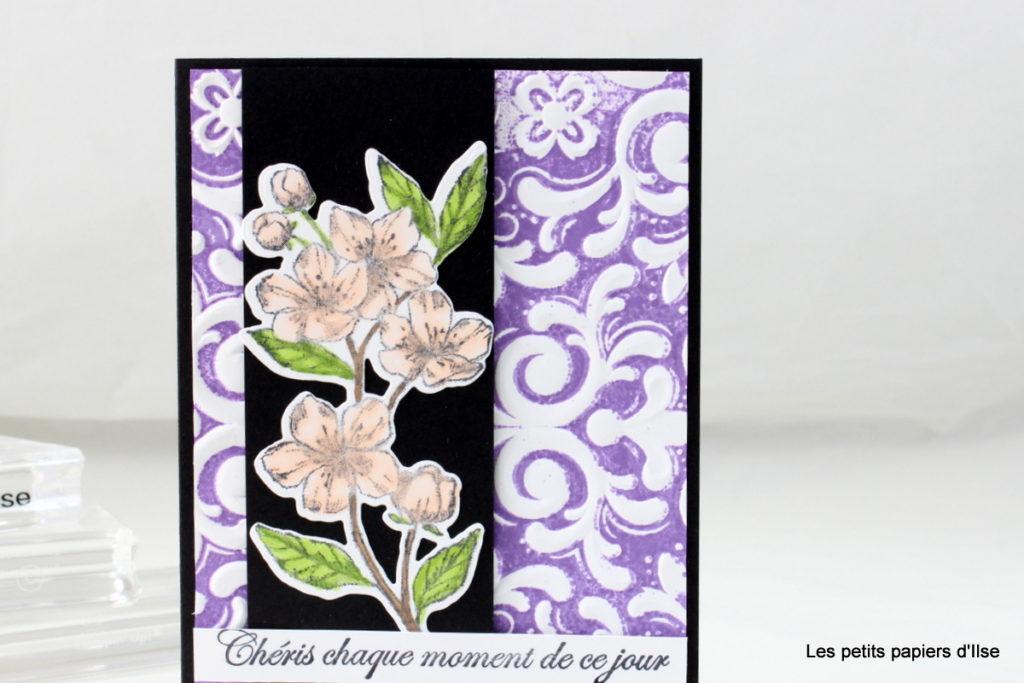 Détail de la carte gaufrage parisien mis en couleurs