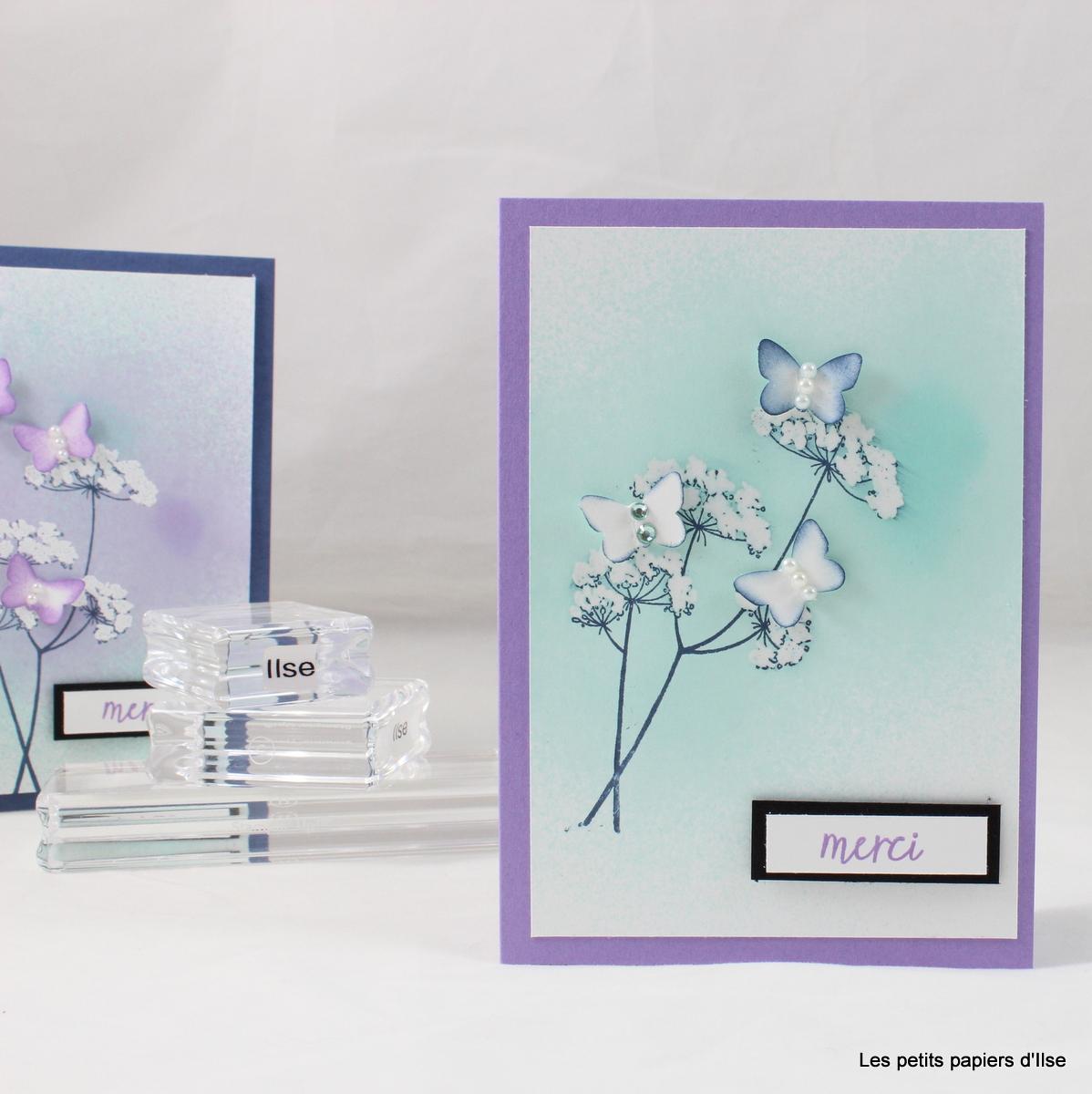 Photo de la carte dentelle blanche et papillons