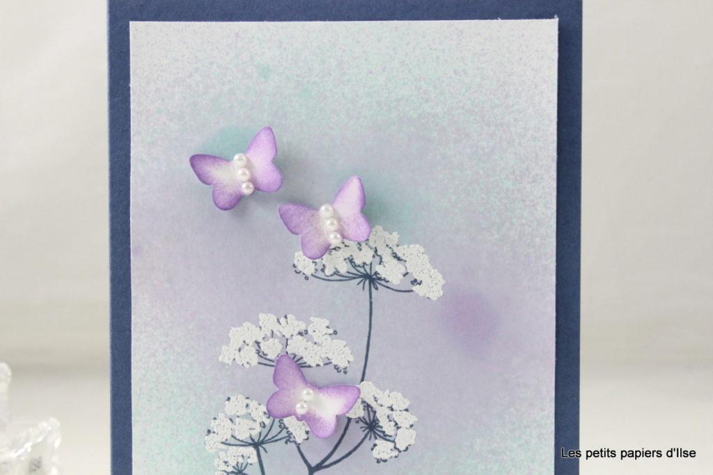 Détail de la carte dentelle blanche et papillons