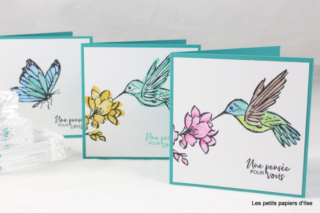 Photo des mini-cartes mises en couleurs aux crayons aquarellables