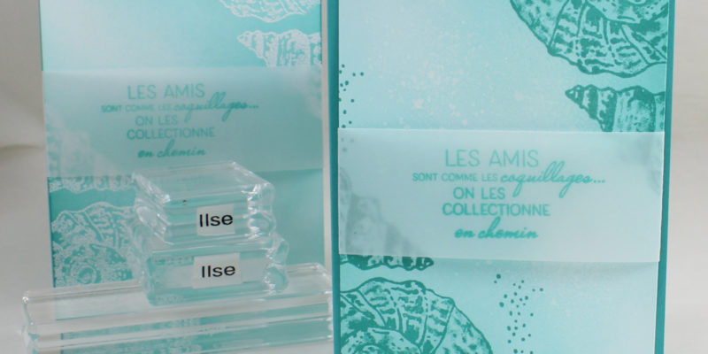 Photo des cartes aux coquillages nacrés en deux versions