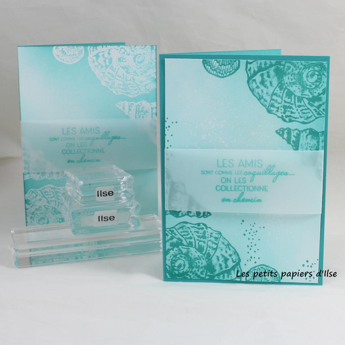 Photo des cartes aux coquillages nacrés en deux versions