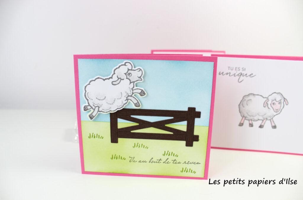 Détail de la carte saute-mouton