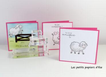 Photo des cartes saute-mouton