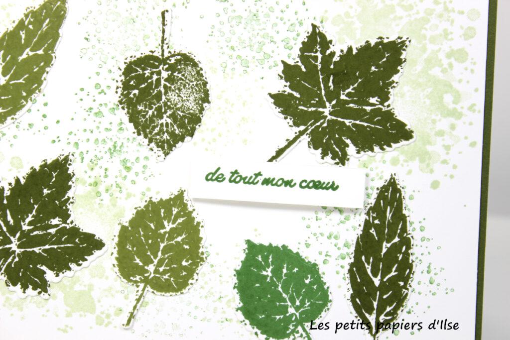 Détail de ma carte aux feuilles vertes