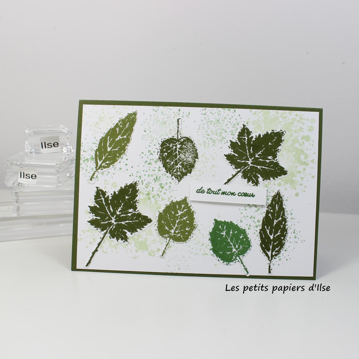 Photo de ma carte aux feuilles vertes